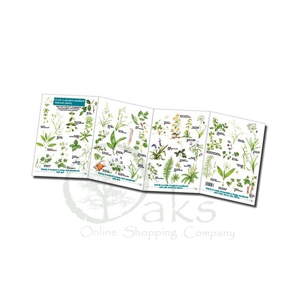 FSC Ancient Woodland Indicator Plants | ID Chart